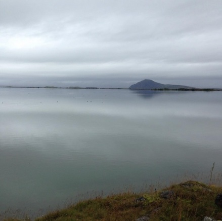 Lake Mývatn by Elizabeth